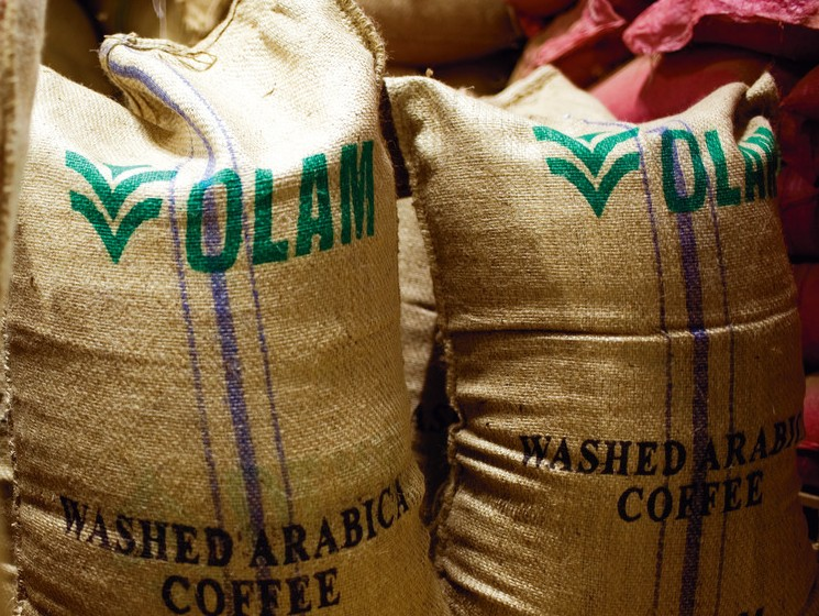 A equipe da Olam vai iniciar um contato sobre o assunto com as secretarias de Agricultura e de Desenvolvimento.. (Foto: Divulgação)